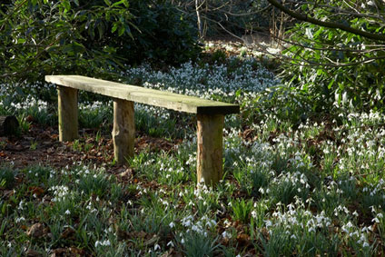 Rode Snowdrops Bench